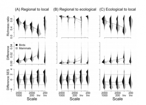 Spatial scaling of functional structure in bird and mammal assemblages
