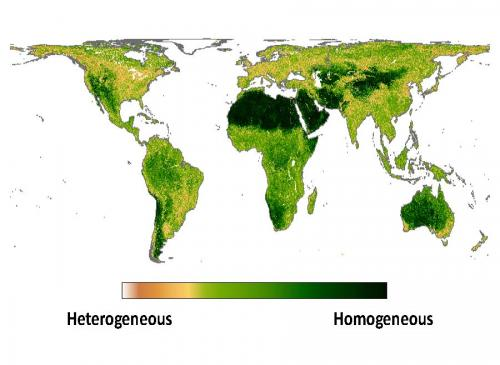 New study characterizing global fine-grain habitat heterogeneity for biodiversity modeling