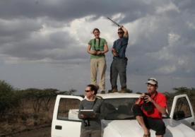 Deploying lightweight GPS tags on hornbills in East Africa