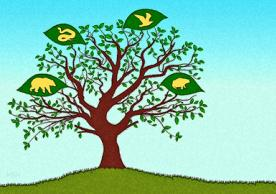 New VertLife project will sprout a forest of family trees