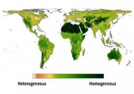 New study characterizing global fine-grain habitat heterogeneity for biodiversity modeling